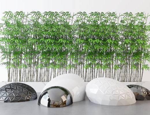 植物, 竹子, 园林