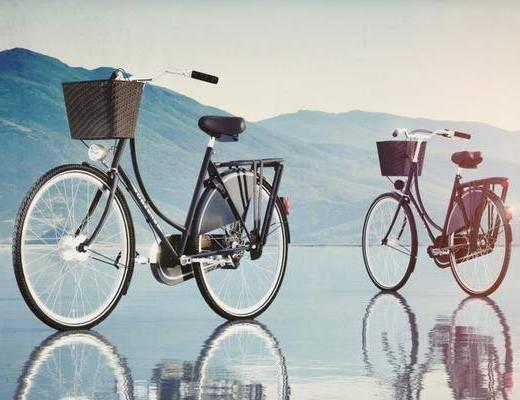 自行车, 机动车, 现代