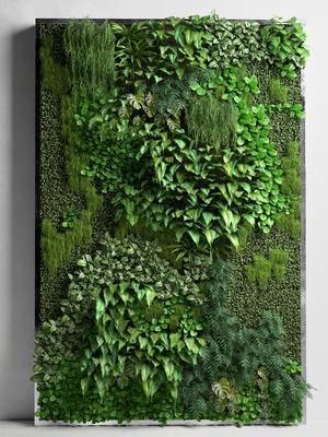 背景墙, 植物背景墙, 绿植, 现代, 植物墙, 植物