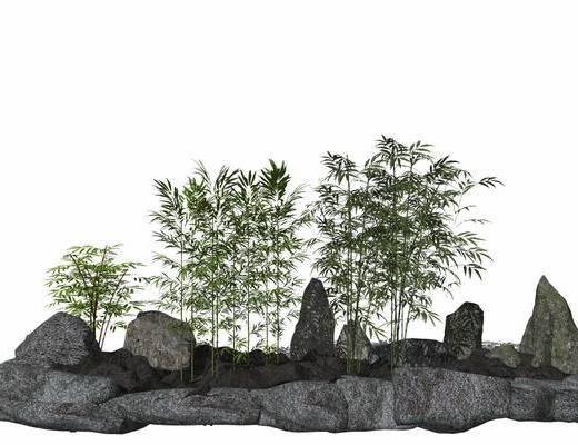 中式, 竹林, 组合, 景观树