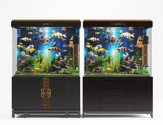 鱼缸, 水族箱
