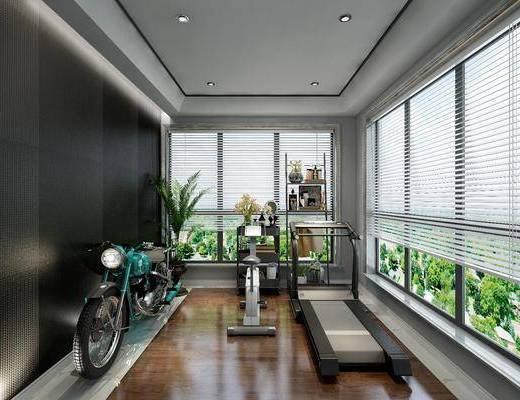 健身房, 摩托车, 健身器材, 装饰架, 摆件, 装饰品, 陈设品, 盆栽, 现代