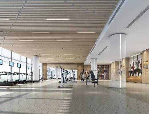 健身房, 健身室, 健身器材, 现代, 健身设备