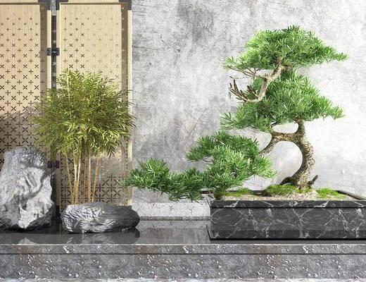 松树, 植物, 摆件组合, 假山, 石子