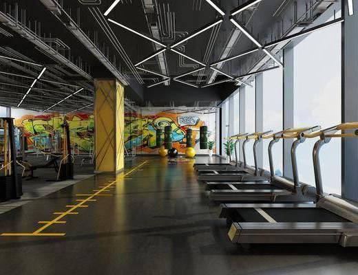 健身房, 现代健身房, 健身室, 健身器材