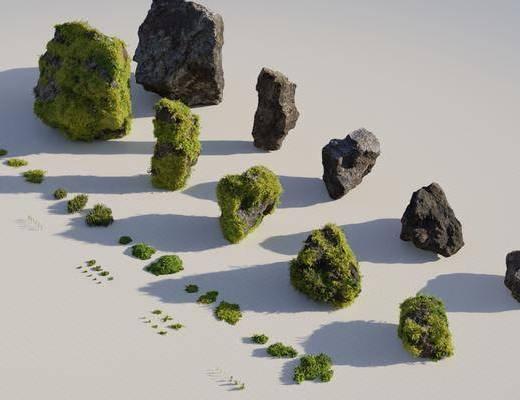 苔藓植物, 景观园林, 植物石头, 现代