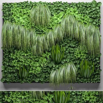 植物墙, 植物背景墙, 绿植, 背景墙, 植物, 现代