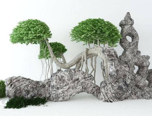 盆栽, 植物, 景观小品, 园艺小品