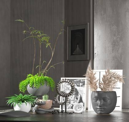 摆件组合, 植物, 盆栽, 装饰画