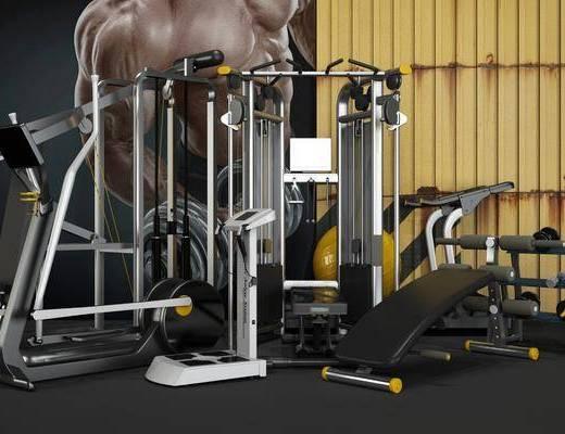 现代, 健身, 器材, 组合