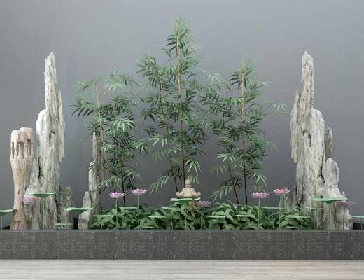 景观, 绿植, 现代