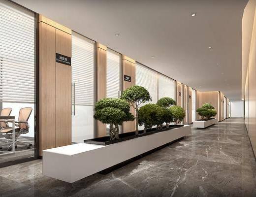 走廊过道, 植物盆栽, 办公室