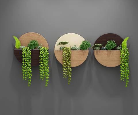多肉植物, 背景墙, 墙饰, 挂件