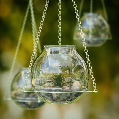 盆栽, 石头, 玻璃花瓶, 现代