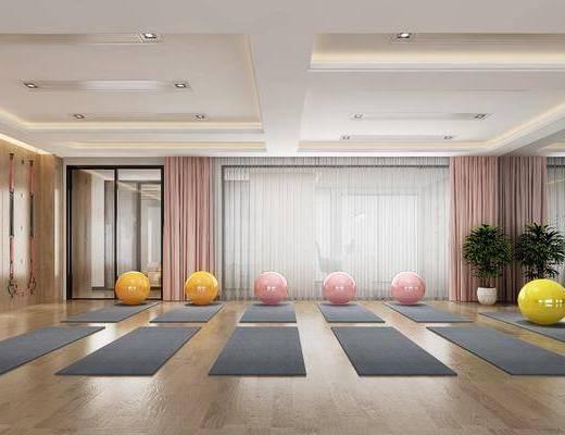 现代瑜伽室, 现代, 瑜伽师, 瑜伽球, 植物, 盆栽, 瑜伽垫