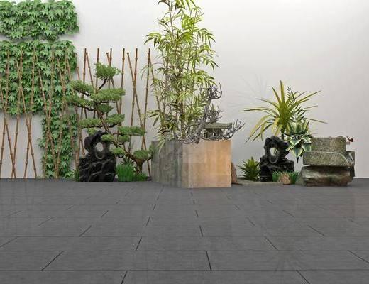 竹子, 景观小品, 植物