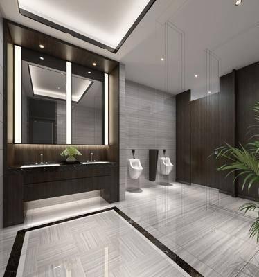 现代, 卫生间, 工装