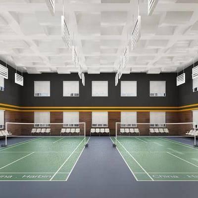 羽毛球館, 單人椅, 現代