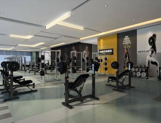 健身房, 建身器材, 现代