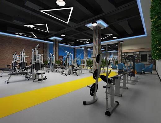 现代健身房, 健身房