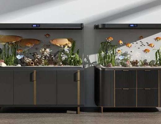 鱼缸, 水族馆, 水族箱