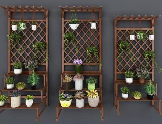 木质梯形, 花架盆栽, 花卉, 现代