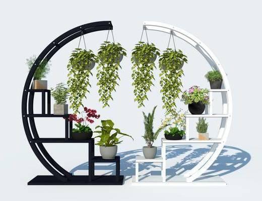 花草, 植物, 盆栽