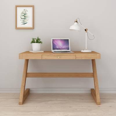 实木书桌, 台灯, 盆栽, 装饰画, 植物画, 北欧
