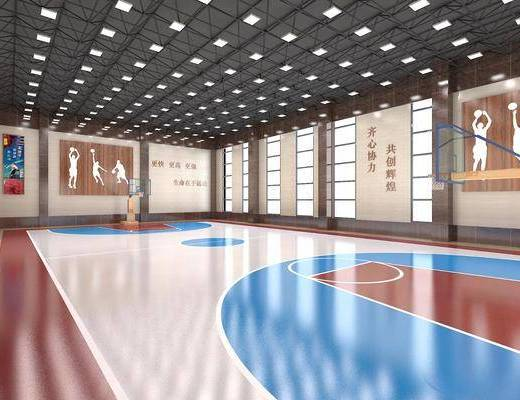 体育馆, 活动室, 篮球室, 现代