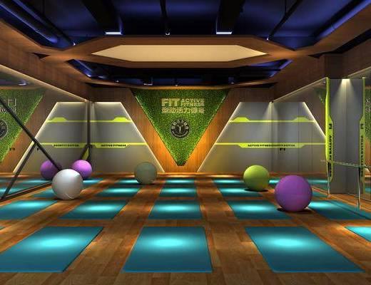 瑜伽房, 健身器材, 瑜伽球, 瑜伽垫, 现代