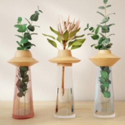 花瓶, 花卉, 花草