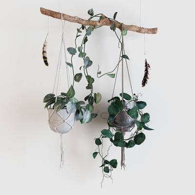 吊篮绿植, 绿植根雕, 现代
