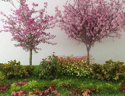 植物, 树木, 花卉, 中式
