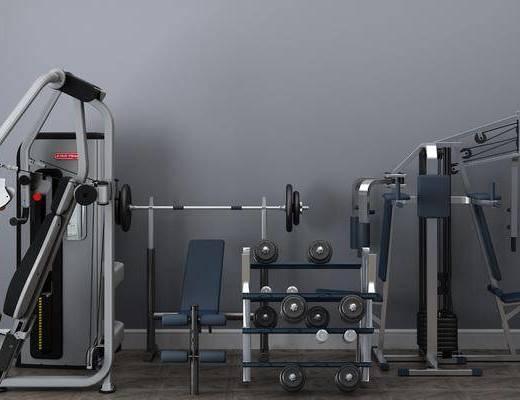 健身器材, 体育器材, 现代