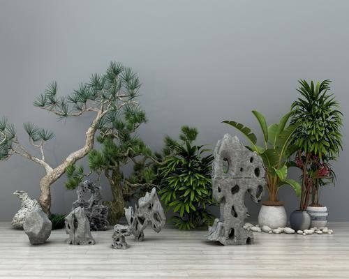 假山石头, 盆栽, 盆景松树, 绿植植物, 摆件组合, 新中式