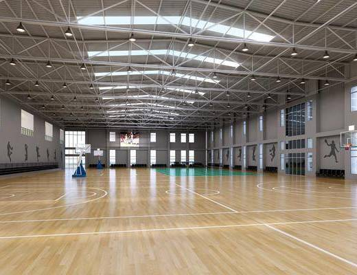 篮球馆, 球场, 现代