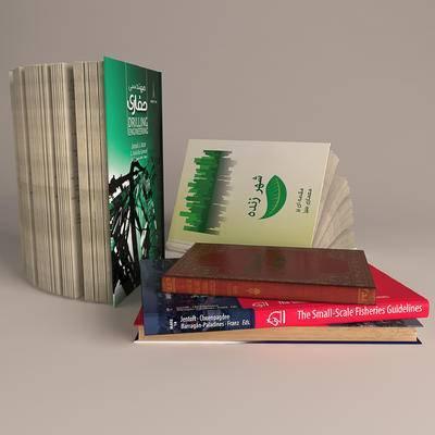 杂志, 书籍, 现代