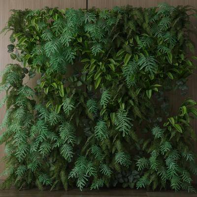 现代植物墙, 墙饰