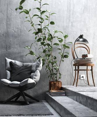 单人椅, 书本, 绿植, 台灯, 北欧