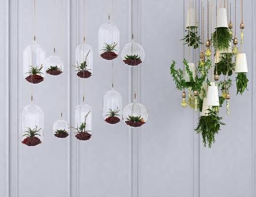 绿植吊灯, 吊灯, 植物吊灯, 灯泡