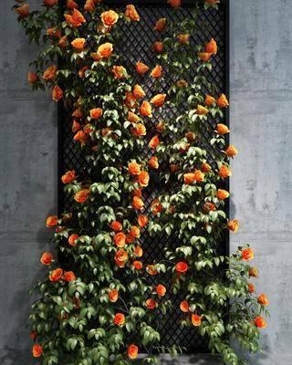 植物墻, 現代