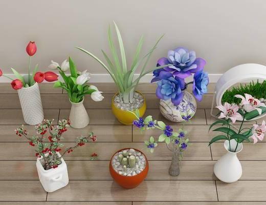 盆栽, 绿植植物, 花瓶花卉, 现代