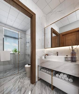 现代, 样板间, 洗手盆, 淋浴, 金属, 马桶, 卫生间