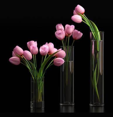 花卉, 花瓶, 植物, 现代