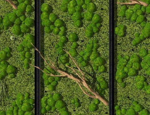 绿植, 植物墙