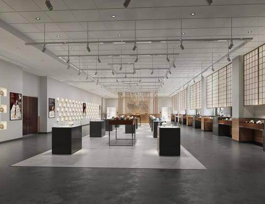 展览展厅, 射灯组合, 摆件组合, 现代