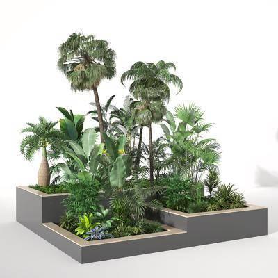 現代花缽, 景觀樹