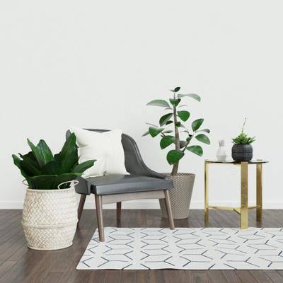 盆栽, 休闲椅, 现代休闲椅, 地毯, 边几, 组合, 现代