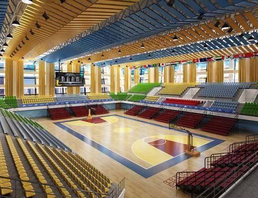 体育馆, 单人椅, 篮球场, 现代