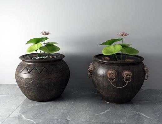 荷花, 水缸, 陶瓷